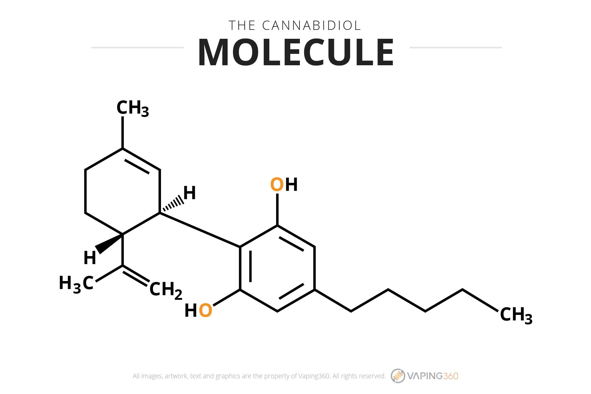 The Cannabidiol Molecule-Infographic