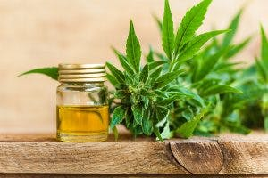 10 Things You Need to Know Before Vaping CBD Oil