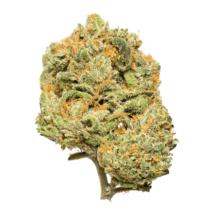 Citron CBD bud