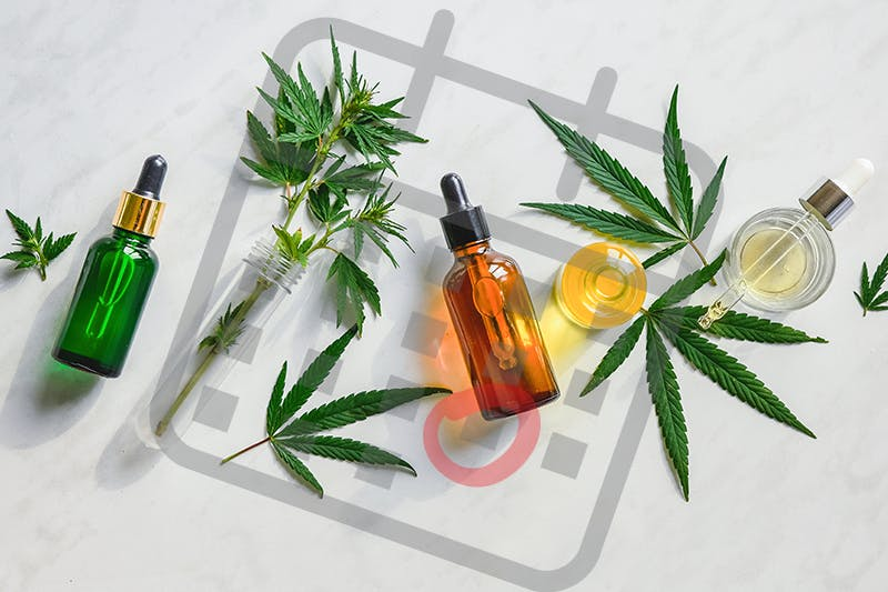 Does CBD Oil Expire? Learn What You Need to Know