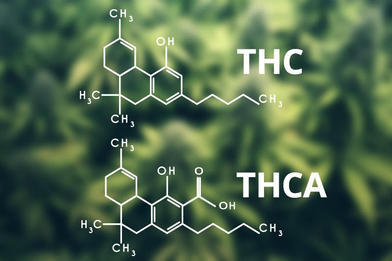 how to use thca