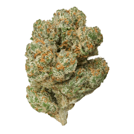 Lemon Aid Indoor Sativa Hemp Flower