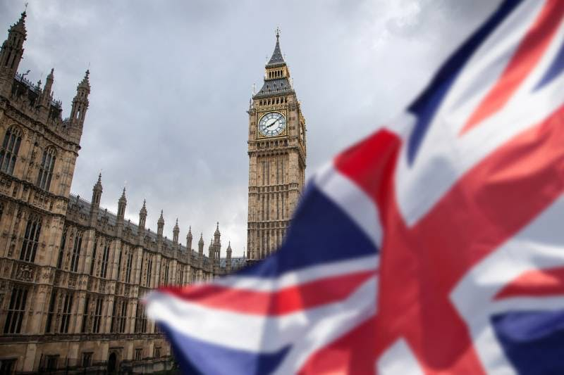 UK Parliamentary Inquiry Challenges WHO